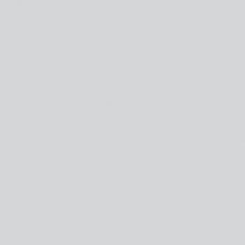 ДВПО Серая 3.2 (2745*1700) (150)