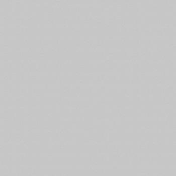 ЛДСП Серый 112 (2800*2070*16мм), КШПН (30)